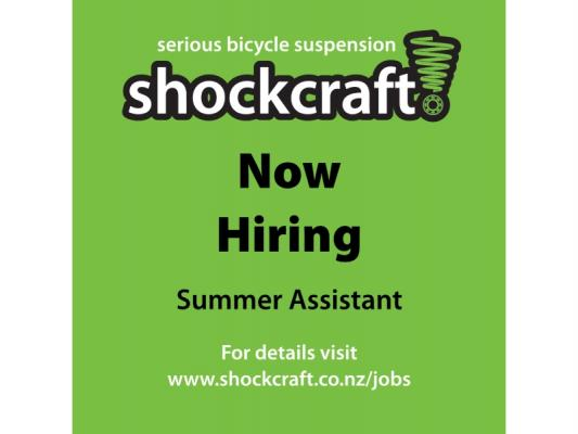 Hiring Summer Assistant