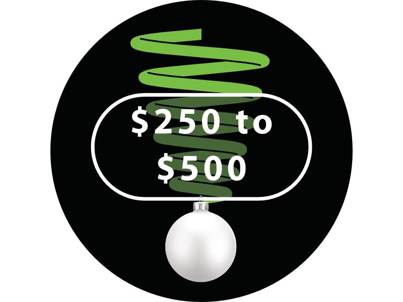 $250 to $500