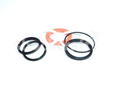 McLeod Air Can Seal Kit (Manitou)