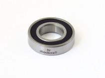 6901-2RS Steel Caged Bearing (Monocrome)