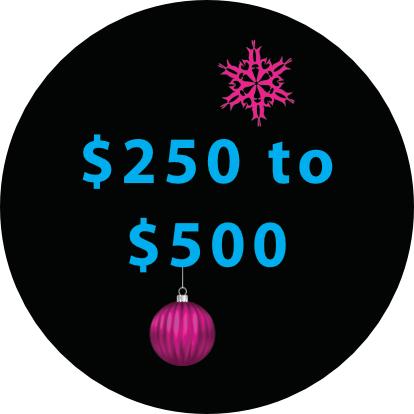 Biken Gift Ideas $250 to $500
