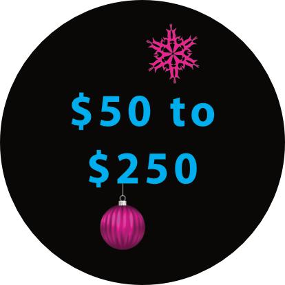 Biken Gift Ideas $50 to $250