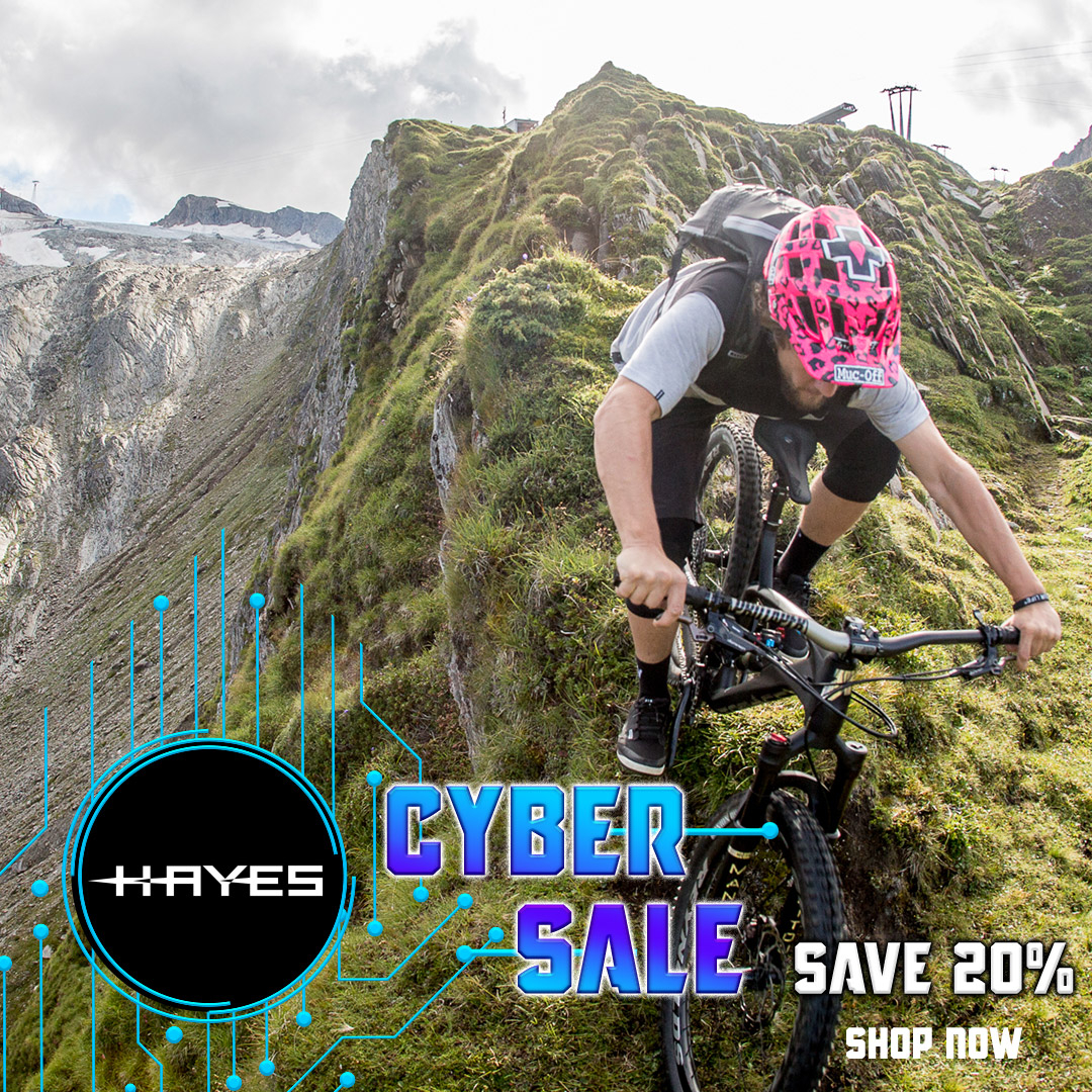Hayes Cyber Sale 2020